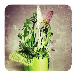 onnae_jardinaposer-01