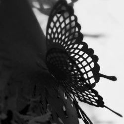 Onnae_lustre_secretgarden_black_zoom01
